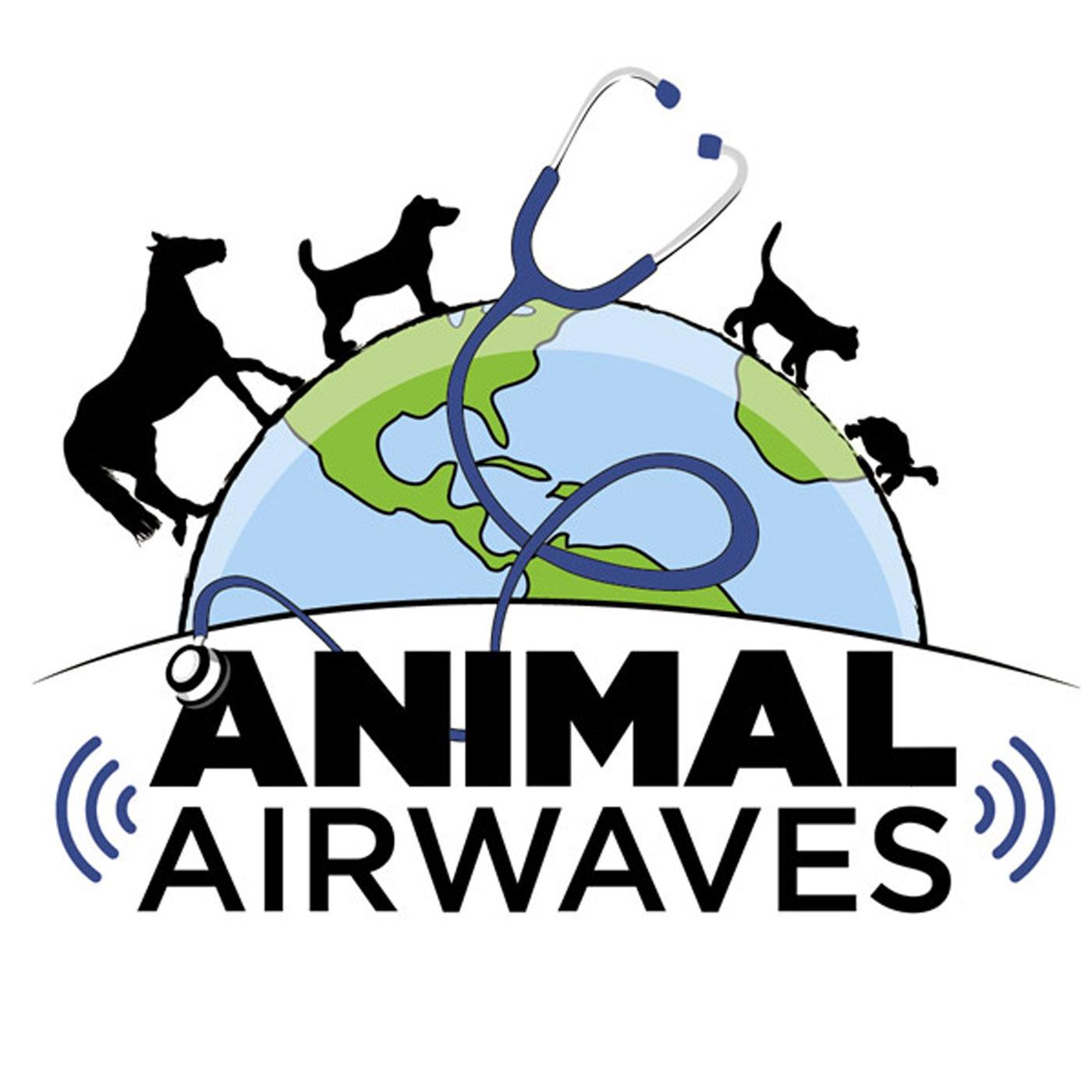 Animal Airwaves